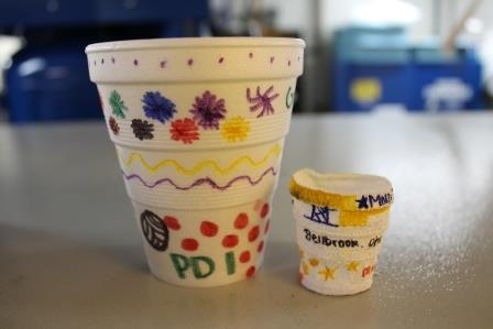 cups small