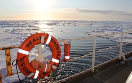 Healy ice